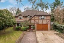 Detached home for sale in Burton Close, Horley, RH6