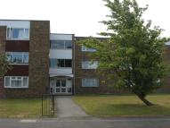 Studio flat in Selwyn Court, Aylesbury