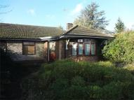 Bedford Road Detached Bungalow to rent