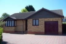 Detached Bungalow to rent in Jennings Close...