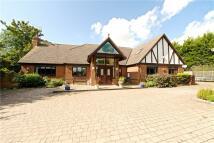 6 bedroom Detached property in Wood Road, Harrold...