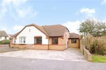 Bungalow for sale in Sillswood, Olney...