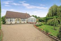 5 bed Detached Bungalow for sale in Sleapshyde Lane...