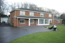 4 bed Detached property for sale in Silksworth Hall Drive...