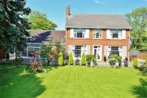 Detached property in Belford Road, Ashbrooke...