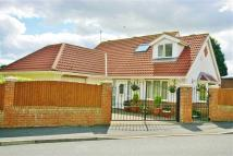 Detached Bungalow in Mount Road, High barnes