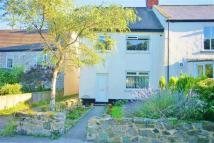 3 bedroom semi detached house for sale in The Village, Ryhope