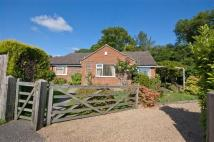 3 bed Detached Bungalow for sale in Westfield, East Sussex...