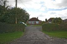 2 bedroom Detached Bungalow in Iden, East Sussex, TN31
