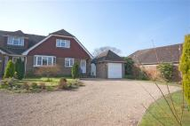 3 bed semi detached property for sale in Broad Oak, East Sussex...