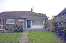 Semi-Detached Bungalow to rent in Beacon Oak Road...