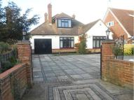 Detached Bungalow for sale in Hockley Road, Rayleigh...