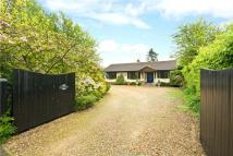 Bungalow for sale in North Crawley Road...