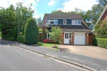 4 bedroom Detached house for sale in FLEET