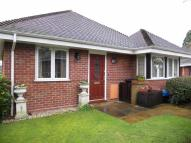 Detached Bungalow for sale in Walnut Close...