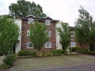 Apartment to rent in Beverley House...