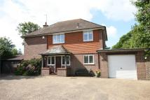 3 bedroom Detached house in Maple Avenue, Cooden...