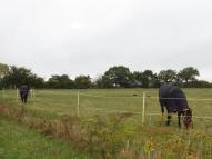 Land for sale in Stowupland, Stowmarket...