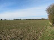Farm Land in Little London Hill...