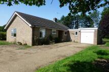 3 bedroom Detached Bungalow for sale in Nacton Lane