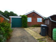 Detached Bungalow in Manderville Road...