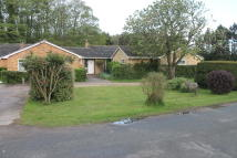 Detached Bungalow to rent in Foresters, Tostock
