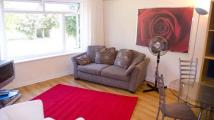 1 bedroom Flat to rent in MUST BEE SEEN! Very...