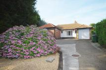 Detached Bungalow for sale in LONDON ROAD, Hythe, CT21