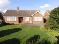 Detached Bungalow for sale in Tuddenham Road