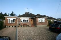Bungalow for sale in Bricket Wood, St. Albans...