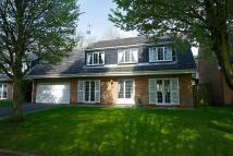 4 bed Detached home for sale in Holly Walk, Finedon...