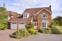 5 bedroom Detached property in Palatine Grove...