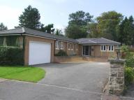 Detached Bungalow in Montpelier...