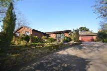 4 bed Detached Bungalow in The Hollow, Mickleover...