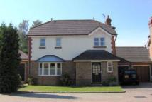 Link Detached House to rent in Lightwater