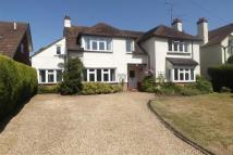 4 bed property to rent in South Farnham