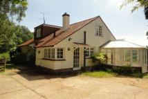 property to rent in Old Church Lane, The Bourne, Farnham, GU9