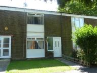 Old Terraced house to rent
