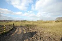 Land in Station Road, Pilsley