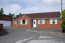 Detached Bungalow for sale in Willow Close...