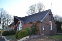 3 bedroom Detached Bungalow for sale in Kings Lodge Drive...