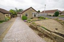 3 bedroom Detached Bungalow for sale in Coed Arhyd, The Drope...