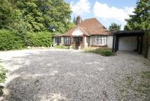 Chalet for sale in High Road, Hockley, Essex