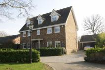 Detached property for sale in Royal Court, Eastwood...