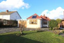 Common Lane Detached Bungalow for sale