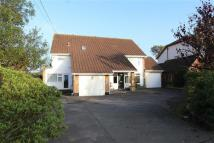 Detached property in Folly Lane, Hockley...
