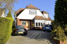 4 bed Detached property in Hollytree Gardens...