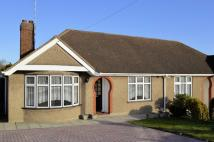 3 bed Semi-Detached Bungalow in Weir Gardens, Rayleigh...