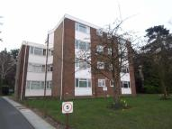 252 Pampisford Road Flat to rent