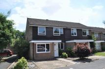 3 bed semi detached house to rent in Norton Road, Camberley